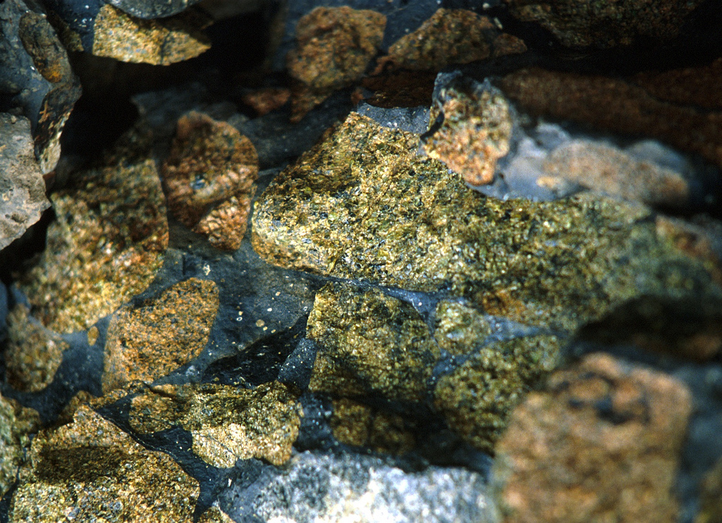 Mantle Xenoliths